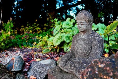 buddah surrounded by rocks and greenery